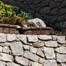 img.: Supporting stone wall